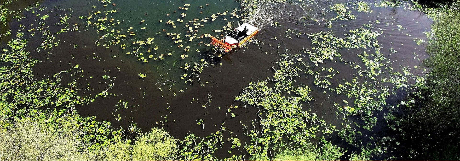 Lake Weed Control | The Aqua Contractor